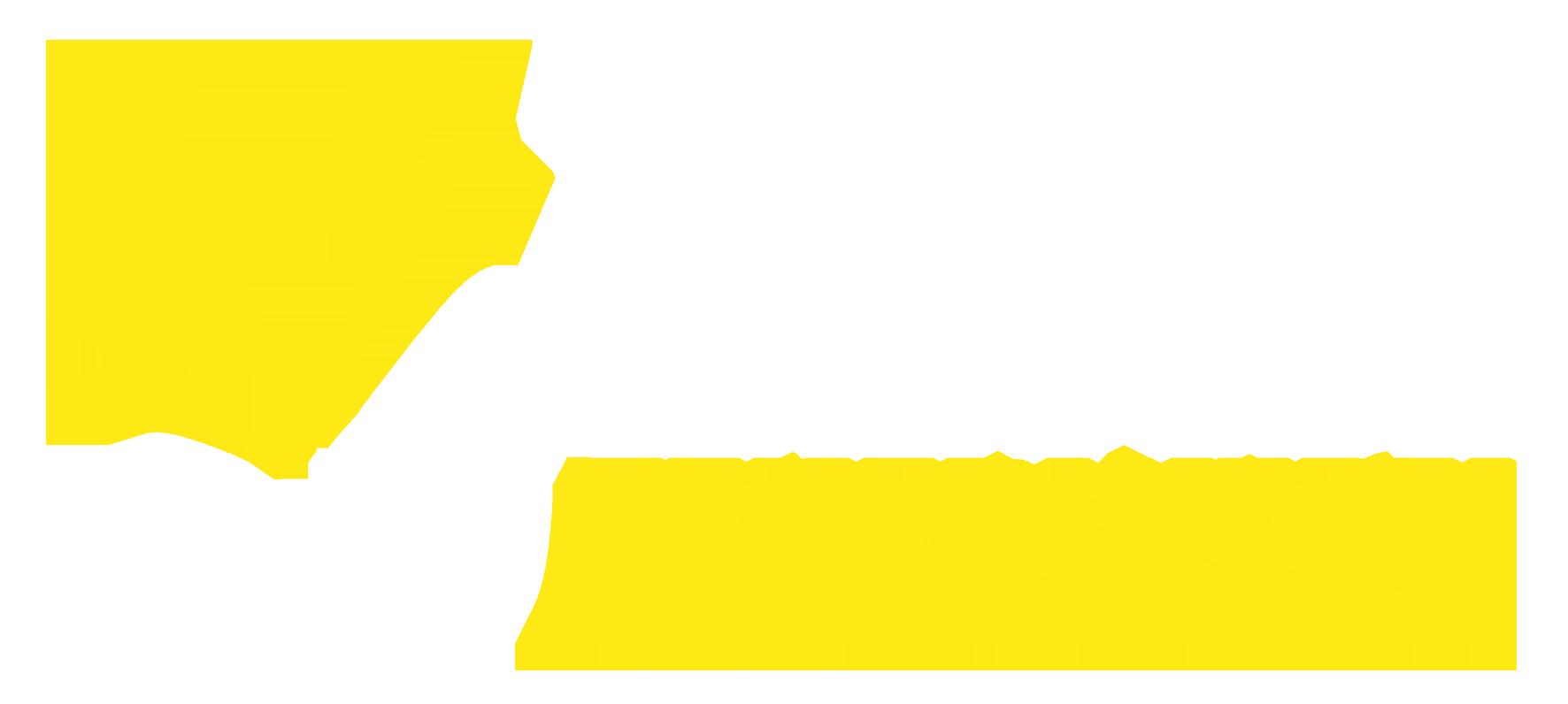 http://zenafeuerwerk.de/wp-content/uploads/2017/01/ZENAFEUERWERK.png